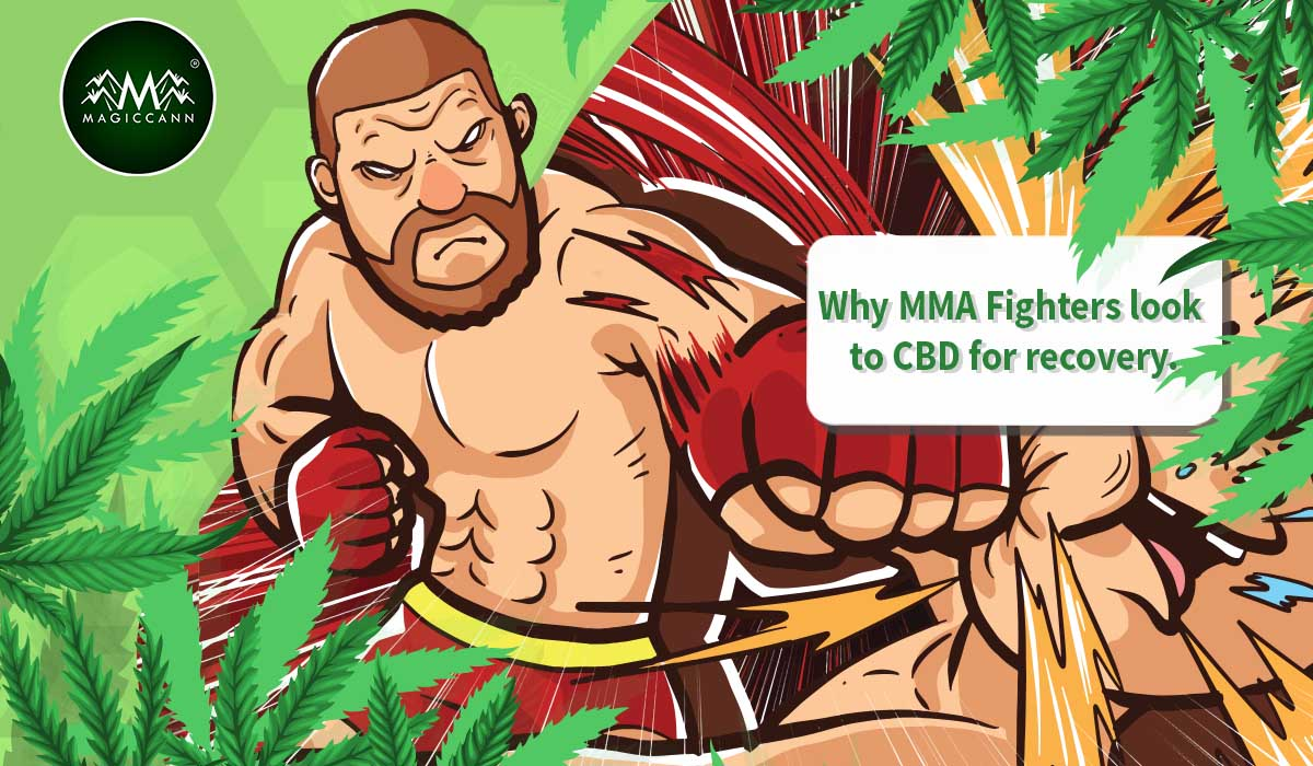 Why MMA Fighters look to CBD for recovery